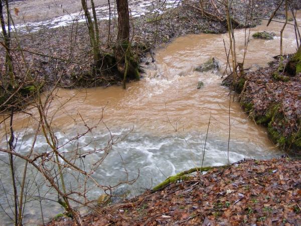 A Kis- és Nagy-Tohonya-patak találkozása a Kossuth-barlang alatt