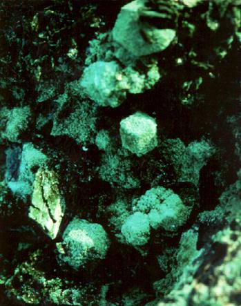 Malachit atakamittal és kuprittal az Atacama sivatagból (Chile)