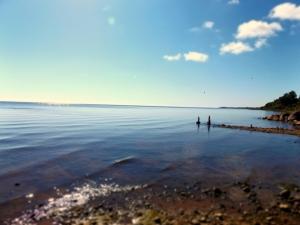 A Peipsi-tó az ország legnagyobb állóvize, területében Oroszországgal osztozik