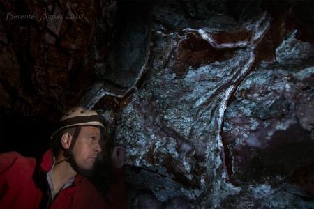 UV-fénnyel megvilágított falszakasz a barlang nagytermében (Fotó: Berentés Ágnes)