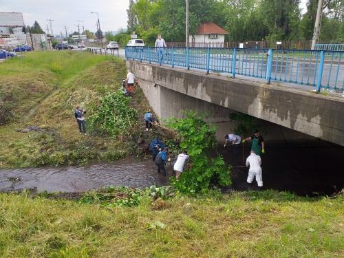 Egy hordaléksziget elbontása, amely után 10 cm-rel apadt a patak vízszintje